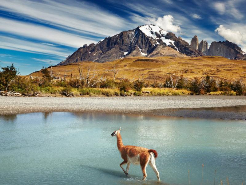 Патагония Чили гора